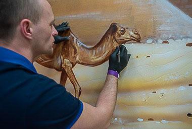 Camel mural