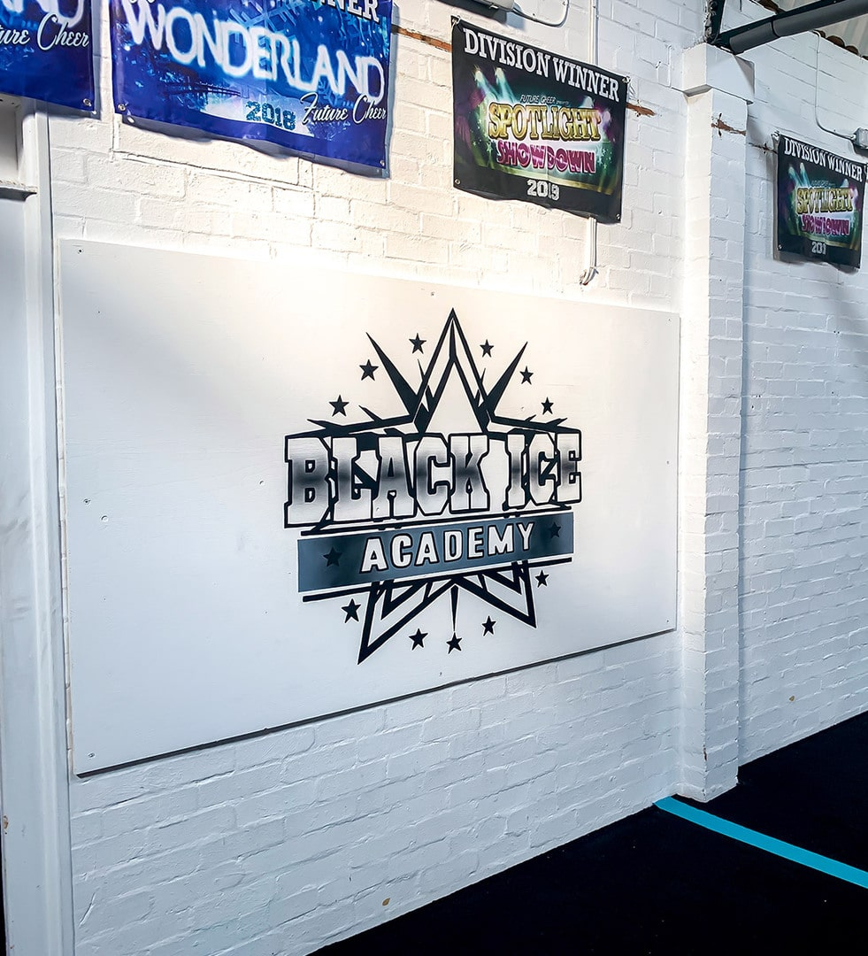 Black Ice Academy logo Hand Painted wall mural
